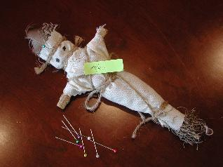Doll Used in Experiment