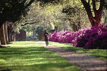 college-campus.jpg