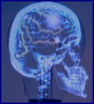 Brain Bulb Wattage