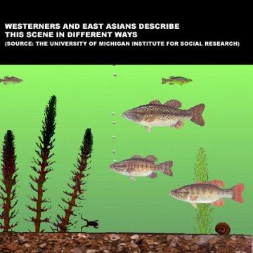 Nisbett fish image