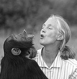 Jane Goodall - Mirror Neurons